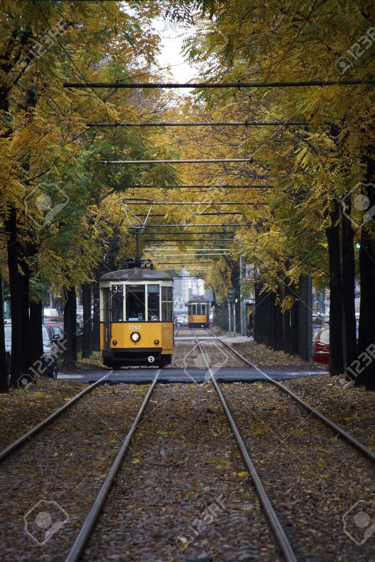 Milan, Italy, 25 October 2012, Yellow Tram Of Milan Under Yellow.. Stock Photo, Picture And Royalty Free Image. Pic 16377808.