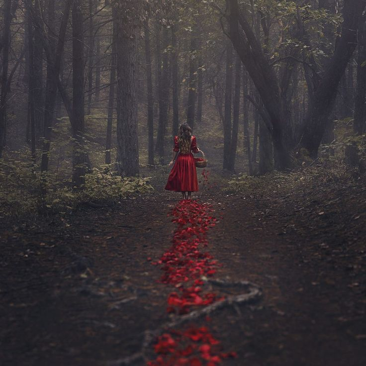 The Trail of Red by Nicole Erfan on 500px