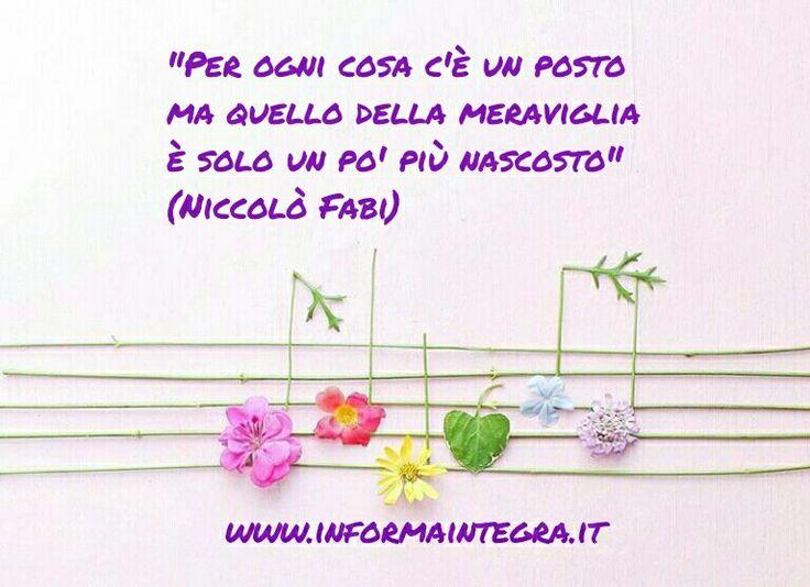 Per ogni cosa c'è un posto, ma quello della meraviglia è solo un po' più nascosto (Niccolò Fabi) www.informaintegra.it