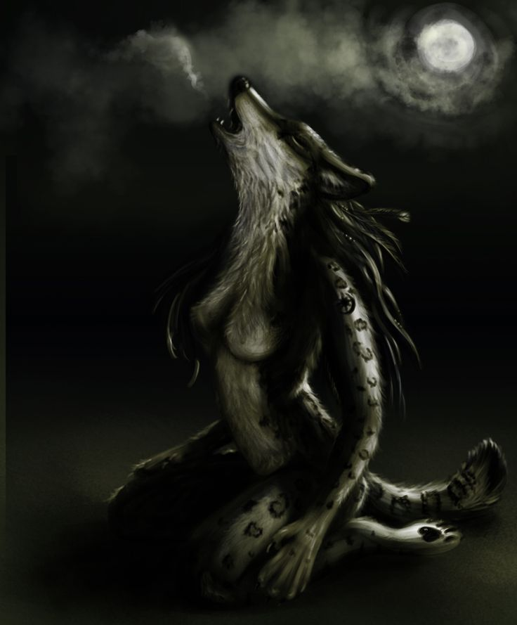 Werewolves Porn 120