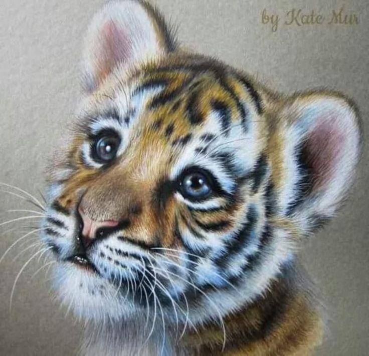 Февраля для, картинки тигрята милые нарисованные