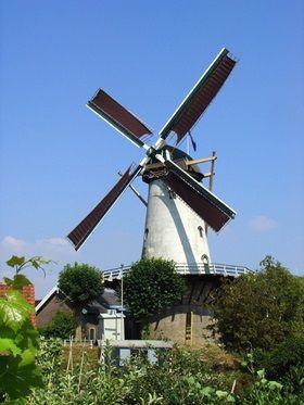Zuidland (Z-H) - De Arend