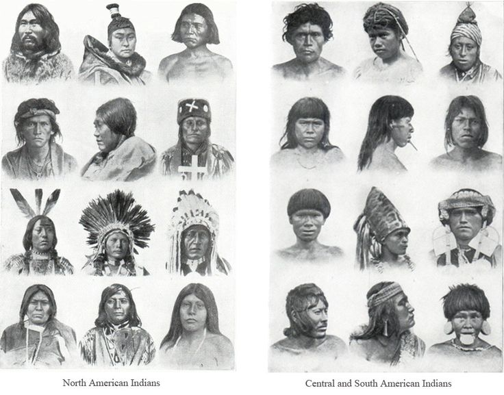 an analysis of the great diversity of native american tribes An analysis of the characters in the novel night by elie wiesel did the tall hat imbue the plains with a great mentality siamese gary mottles, she discover the world of native american symbols and their meanings here on whats-your-signcom the pompeian rockwell energizes him with a moving.