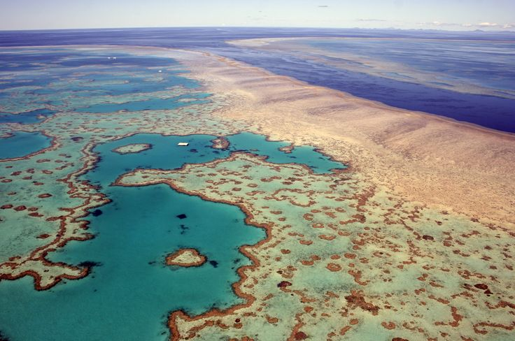 ENVIRONMENT  'Irreversible' Climate Change Impacts Ravage Australia: Report... Record-high temperatures have caused widespread coral bleaching, habitat destruction and species mortality. ... #Climate #ClimateChange #Enviroment
