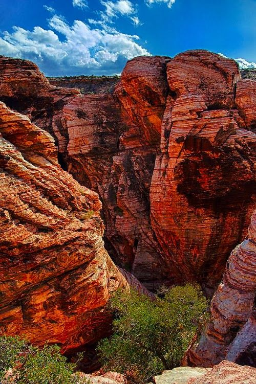 The Red Rock Canyon, Las Vegas.