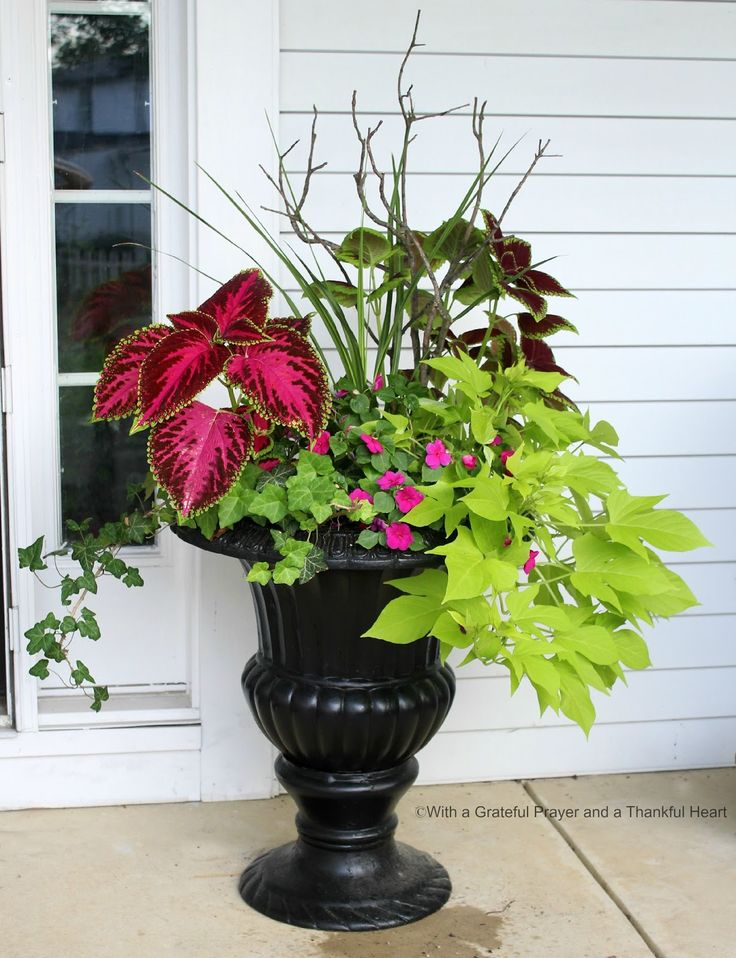 Porch Planters Gardening And Gardens Container