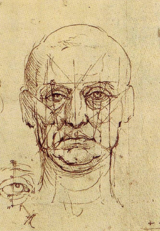 Da Vinci, Proportions of the Face and Eye