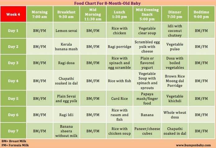 8 Month Old Feeding Chart Cigitkarikaturizecom