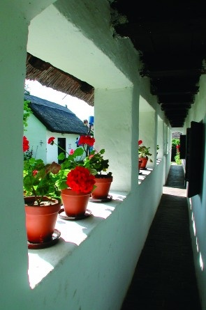 Hungarian folk architecture : geraniums on the veranda (Buzsák, Hungary)/ muskátlis veranda, parasztház