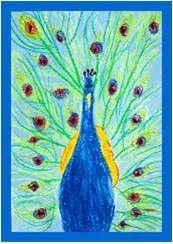 Pauwen - Prachtige pauwen tekenen met oliepastel en lichtblauwe ecoline als achtergrond. Geschikt vanaf groep 5.