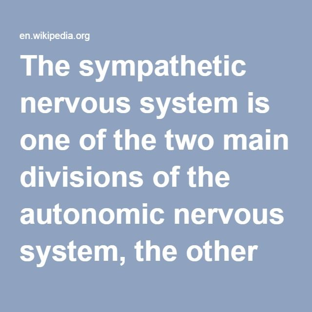 Sympathetic Nervous System-- is one of the two main divisions of the autonomic nervous system, the other being the parasympathetic nervous system. The autonomic nervous system functions to regulate the body's unconscious actions. The sympathetic nervous system's primary process is to stimulate the body's fight-or-flight response. It is, however, constantly active at a basic level to maintain homeostasis.