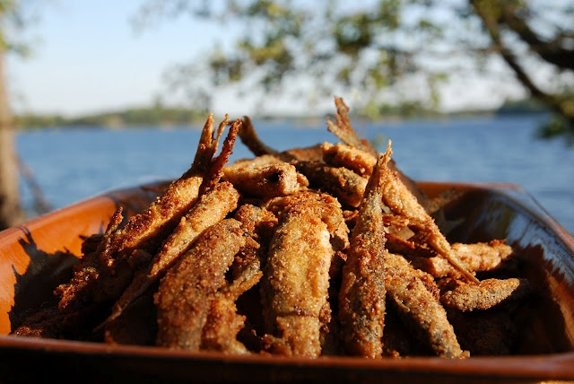 butter fried vendace