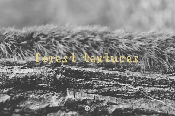 Check out Forest textures by Digital Infusion on Creative Market