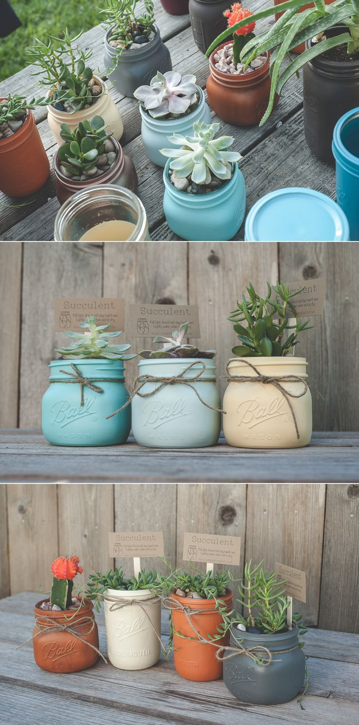Painted mason jars with succulents. Cute little mason jar plants. Make a succulent garden with jars or give as gifts. Painting tips linked.