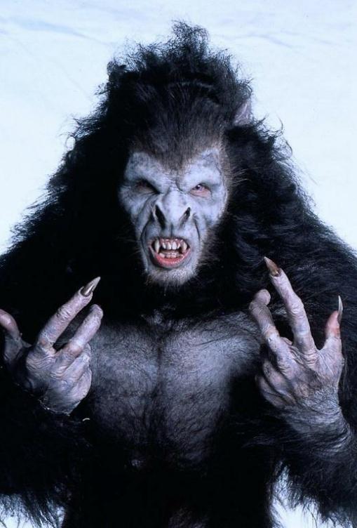 Gary Oldman ~ Werewolve/Dracula ~ Do not see me. Bram Stoker's Dracula by Francis Ford Coppola