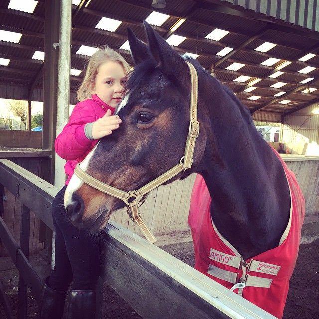 Voor dit kleine paardenmeisje ga ik dus een paardentaart maken.