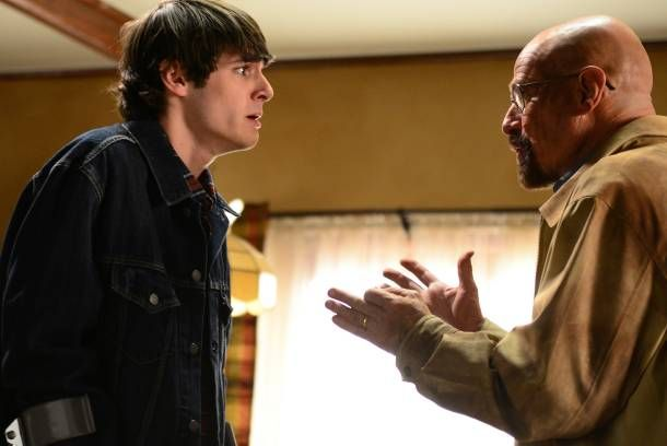 """A Psychiatrist Analyzes Breaking Bad's Outraged Walt Jr. and Others"" by Gwynne Watkins"