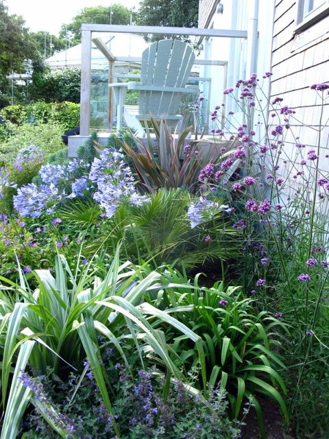 17 best ideas about coastal gardens on pinterest for Beach house landscaping plants