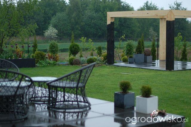 Szałwie czy lawendy? - strona 2 - Forum ogrodnicze - Ogrodowisko