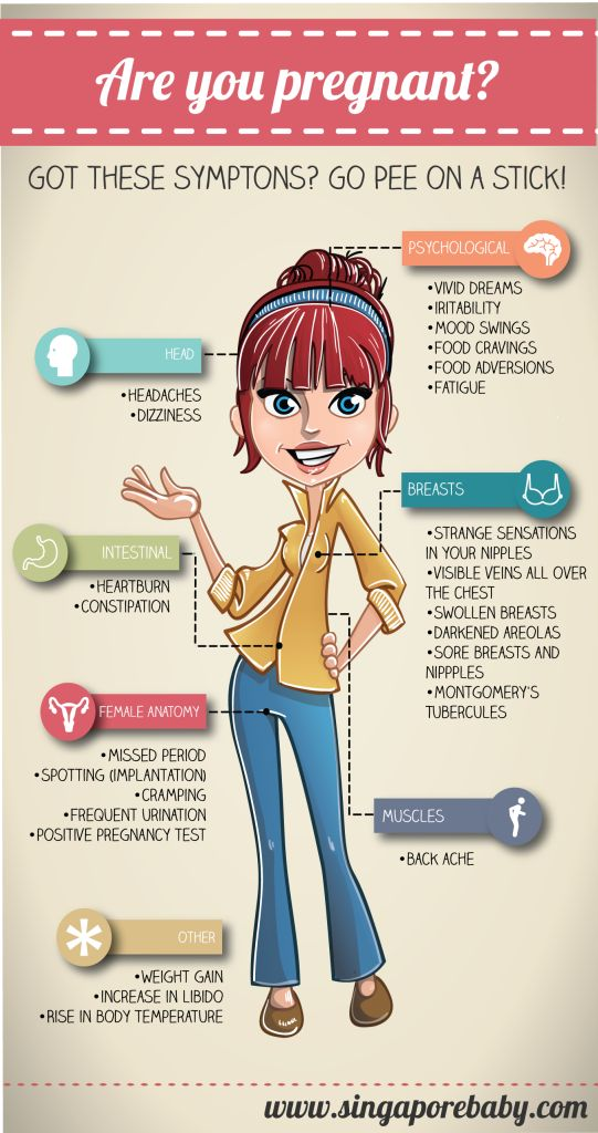 Pregnancy Symptoms. Early Signs of Pregnancy Infographic.