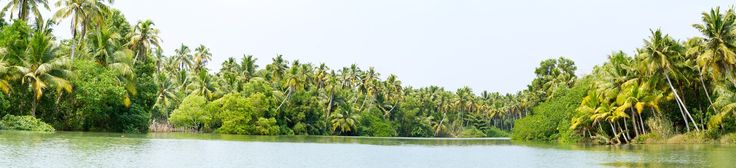 Sliding - Kerala backwaters - a chain of brackish lagoons and lakes lying parallel to the Arabian Sea coast in Kerala, southern India. Panorama from 5 photos taken from sliding boat :-)