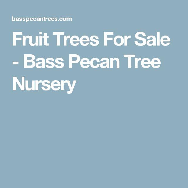 Fruit Trees For Sale - Bass Pecan Tree Nursery