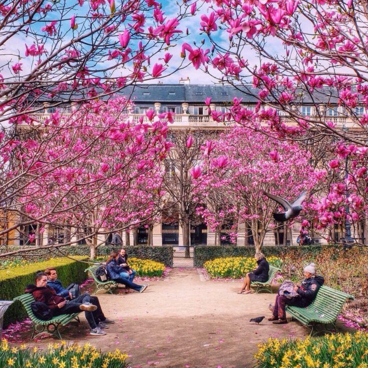 Jardin du Palais Royal, Paris ~ March 30, 2015 (by Mary Quincy)