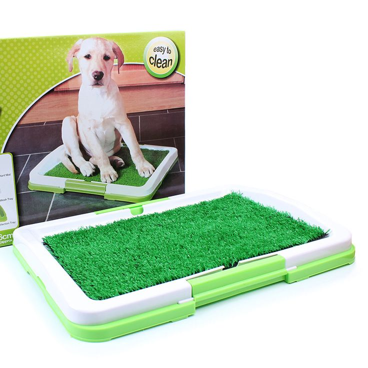Check out this product on Alibaba.com APP training tools indoor toilet dog potty pee mats pet grass pad
