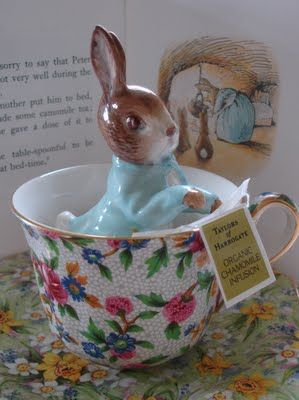 """""""I am sorry to say that Peter was not well during the evening.  His mother put him to bed, and made some camomile tea: and she gave a dose of it to Peter!""""  From The Tale of Peter Rabbit ~ by Beatrix Potter"""