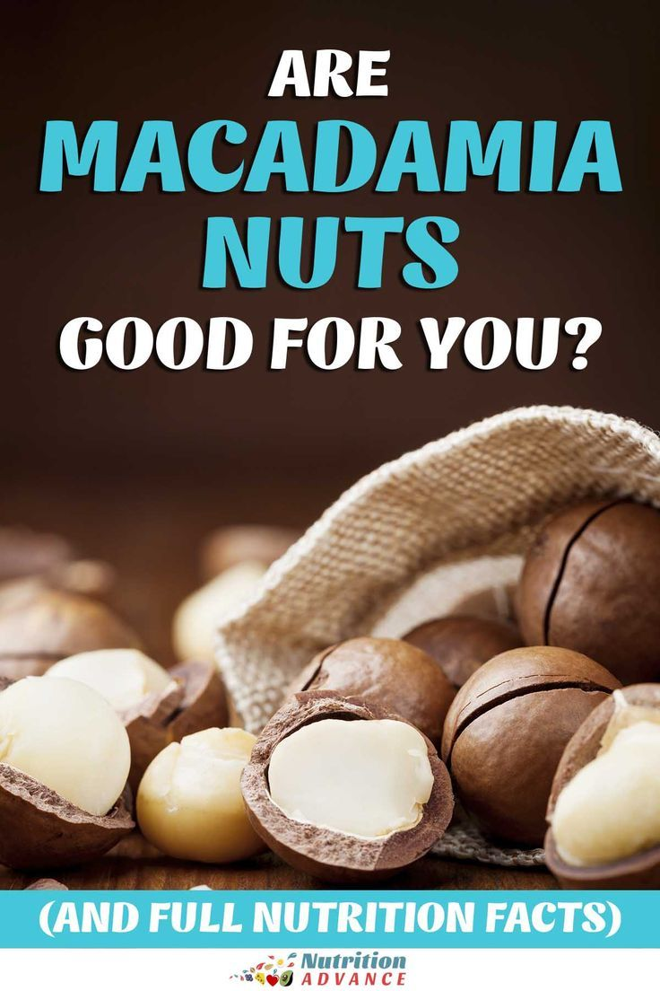 Are Macadamia Nuts Good For You Healthy Nuts Macadamia Nut Benefits Nut Benefits