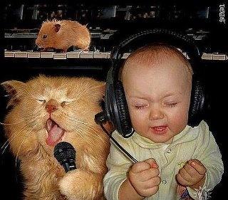 Karaoke.: Music, Funny, Crazy Friends, Humor, Rocks, Kid, Animal, The Bands, Baby Cat