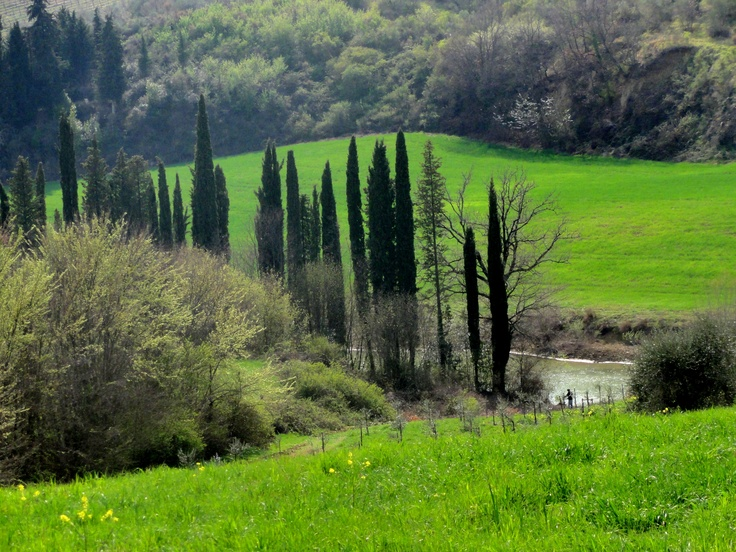 Countryside of Tavarnelle - Photo by Bianca Corti