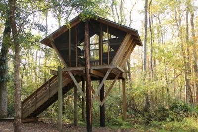 Tree House Weekend | Unity Church for Creative living