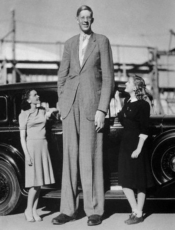 Robert Pershing Wadlow was one of the tallest men in modern history and his physical size was scientifically proven.. His exceptional physical size during early adulthood was caused by abnormal pituitary gland, which resulted in excessive growth hormones production. In 1940, he sufferered a blister after a small accident, which caused severe infection. His condition continued to worsen, despite a series of surgeries and blood transfusions. Wadlow died at the age 22.