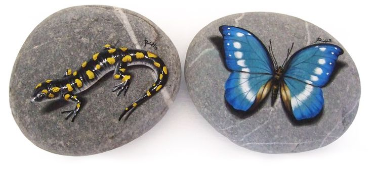 Salamander and blue butterfly | Rock Painting Art by Roberto Rizzo | www.robertorizzo.com