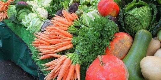 IL'agriculture biologique, plus productive qu'on ne le pense