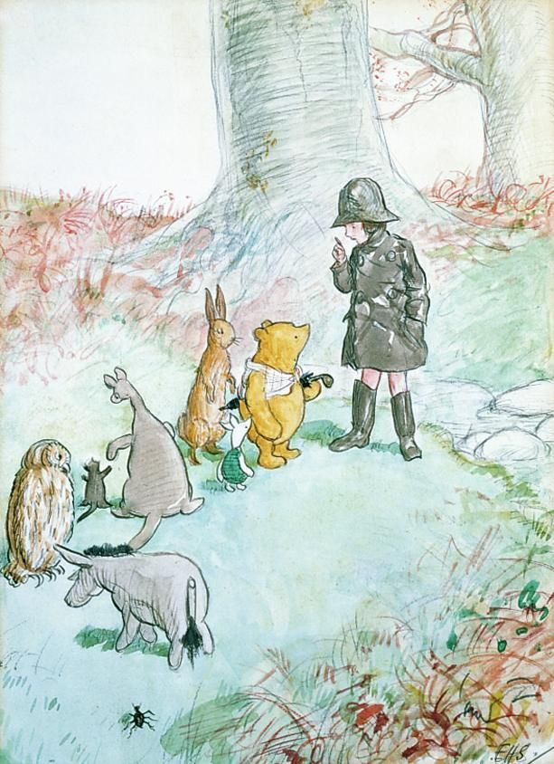 Christopher Robin organizes an expedition along with Winnie the Pooh, Rabbit, Piglet, Kanga and Roo, Owl and Eeyore.