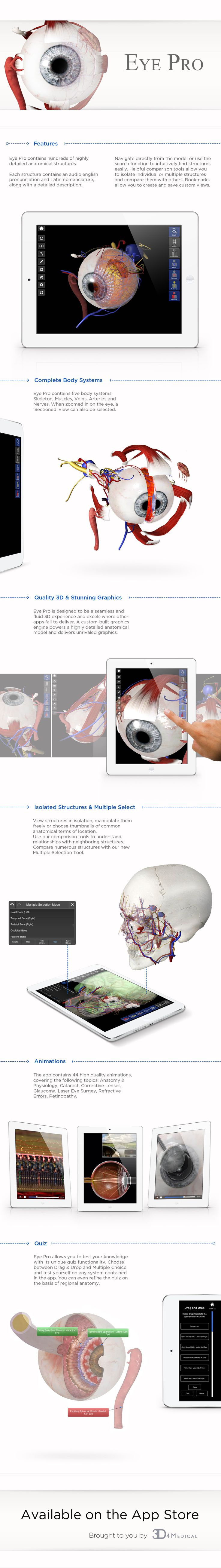 The 117 best EYE images on Pinterest | Faces, Medical science and ...