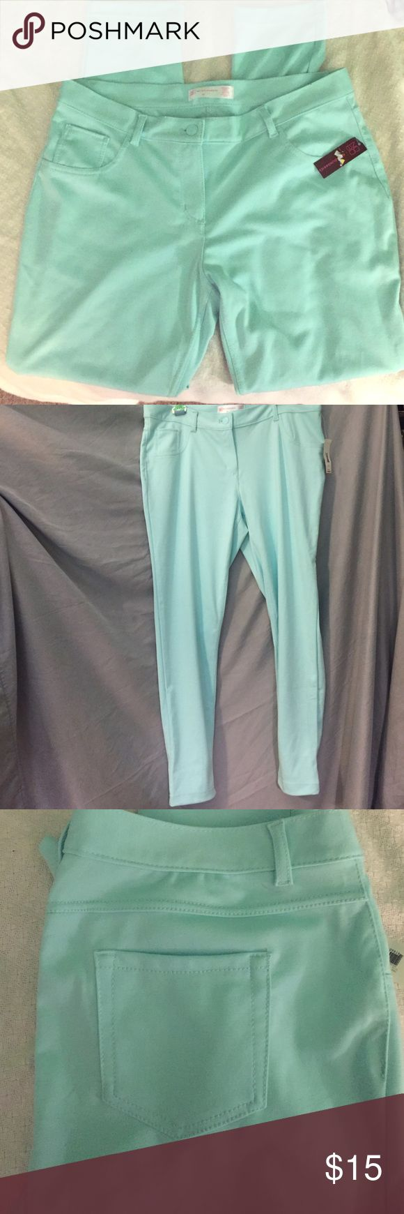 No boundaries ponte pants NWT Mint pants. Size 17 juniors. No Boundaries Pants Leggings