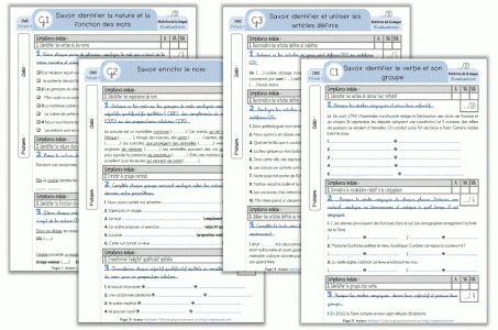 Interlignes [CE2 - CM1 - CM2] - Les évaluations groupées - Cycle 3 ~ Orphéecole