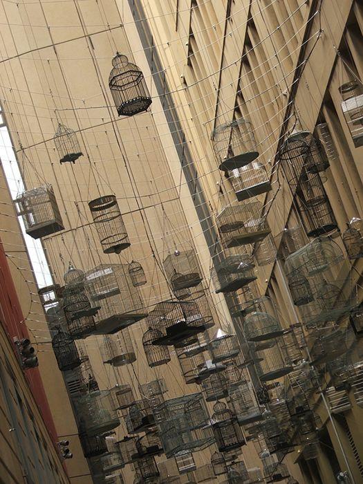 Sydney bird cages #starkzineau #photography #sydney #birdcages #installationart #georgestreet #installation #art