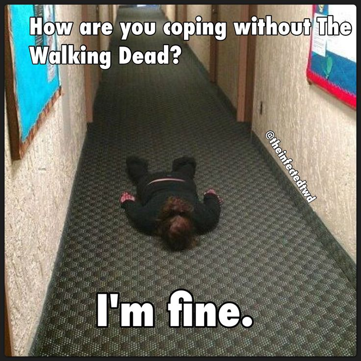 Without The Walking Dead nothing matters and everything is pointless, so I try…