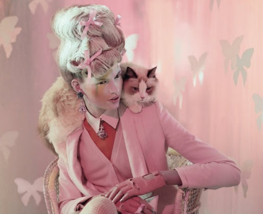 Drop Dead Cute - Kawaii for Sexy Ladies: Let Them Eat Pastel CakeCat Fashion, Bette Frank, Animal Attraction, Fashion Models, Jeff Bark, April 2012, Fashion Editorial, Editorial Fashion, Cat Lady