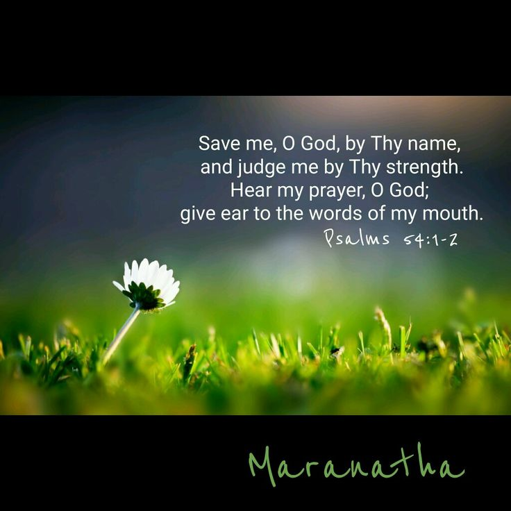 #Psalms 54:1-7 (KJV) Save me, O God, by thy name, and judge me by thy strength. Hear my prayer, O God; give ear to the words of my mouth. For strangers are risen up against me, and oppressors seek after my soul: they have not set God before them. Selah. Behold, God is mine helper: the Lord is with them that uphold my soul. He shall reward evil unto mine enemies: cut them off in thy truth. I will freely sacrifice unto thee: I will praise thy name, O LORD; for it is good. For he hath…