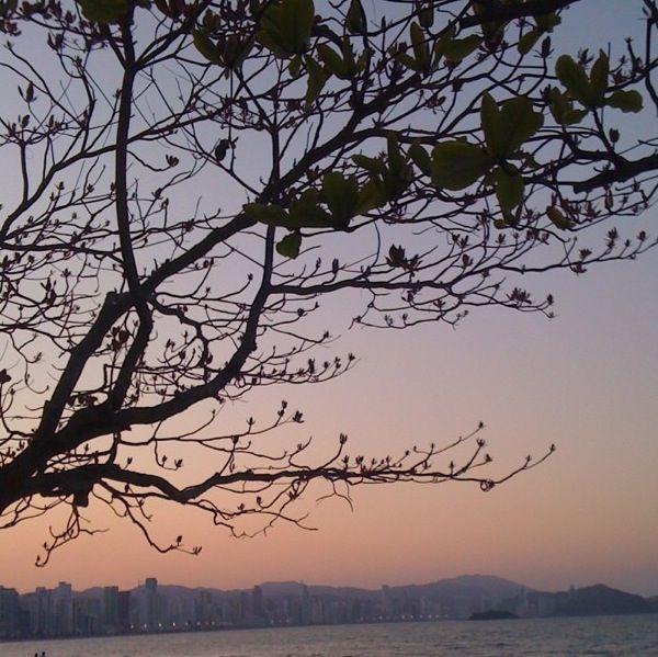 Balneário Camboriú - Santa Catarina - Brazil #city #sunset #pinksky