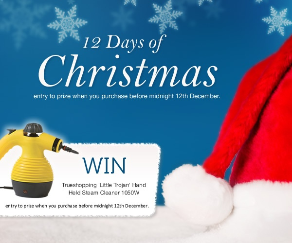 12 Days of Christmas, a gift for you…