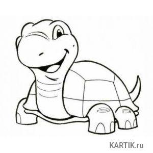 Как нарисовать черепах карандашом поэтапно 9