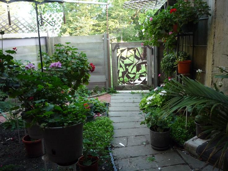 my backdoor entry garden