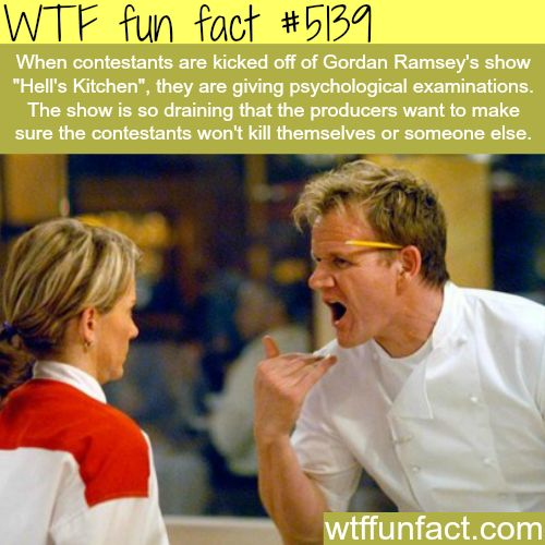 "Gorden Ramsey's show ""Hell's Kitchen"" - WTF fun facts"