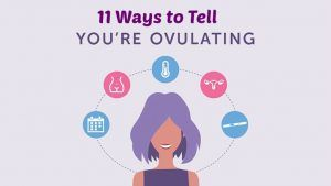 Get Familiar with your Ovulation Cycle. Know about these 11 Signs and Symptoms of Ovulation!!